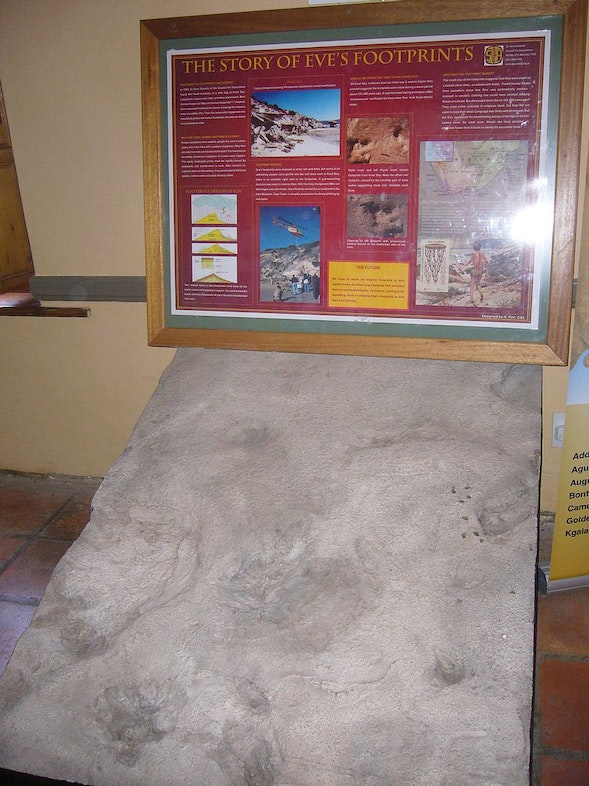 Replica of 'Eves footprints' at Geelbek visitors centre, West Coast National Park, Replica of 'Eves footprints' at Geelbek visitors centre West Coast National Park