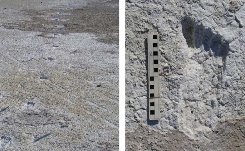 footprints from the Willandra Lakes