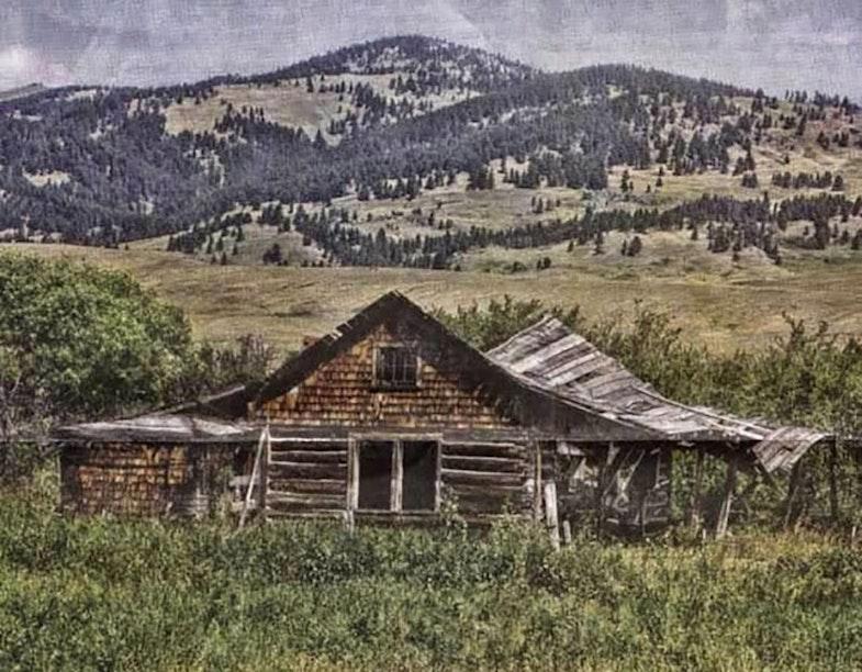 Birdie Brown's homestead