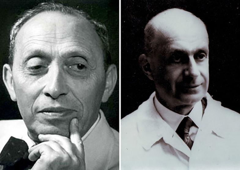 Bernhard Zondek and Selmar Aschheim