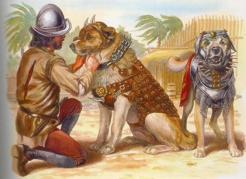 conquistador war dogs