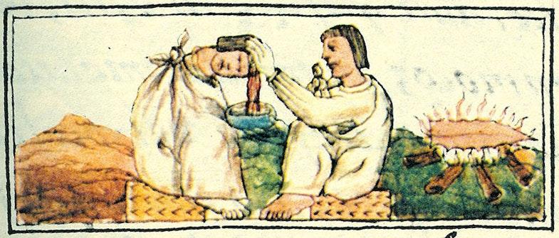 Treating a head wound, Florentine Codex Book 10