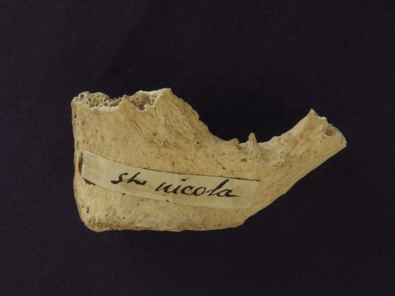 The partial pubic bone, thought to belong to St. Nicholas