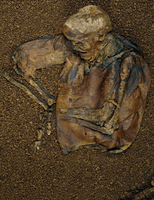 Lindow Man Lindow II Upper half of human male body, aged approximately 25 years at death. Found preserved in a bog. Hair and skin well-preserved. Remains of a fur armband around left arm and a garott of animal sinew around neck