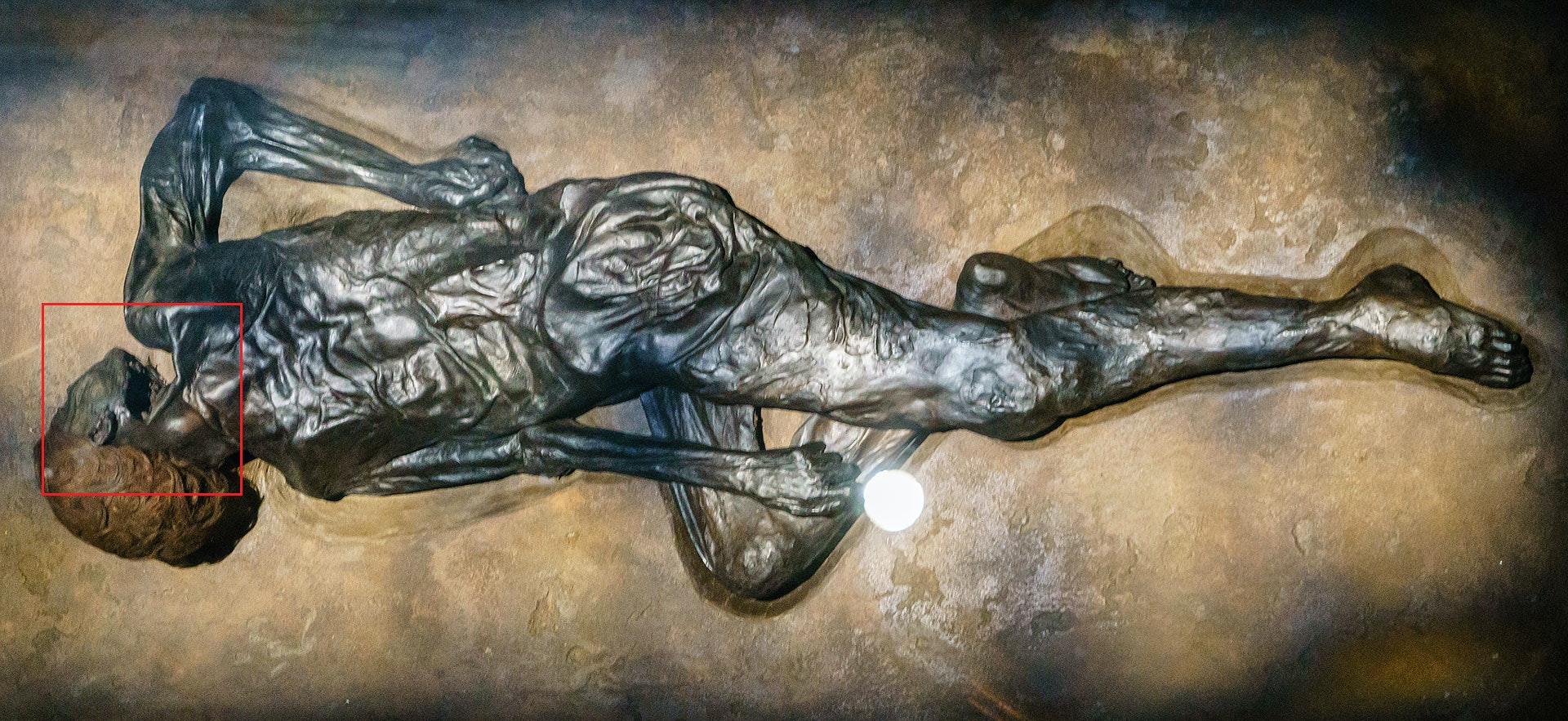 Grauballe Man. Moesgaard Museum