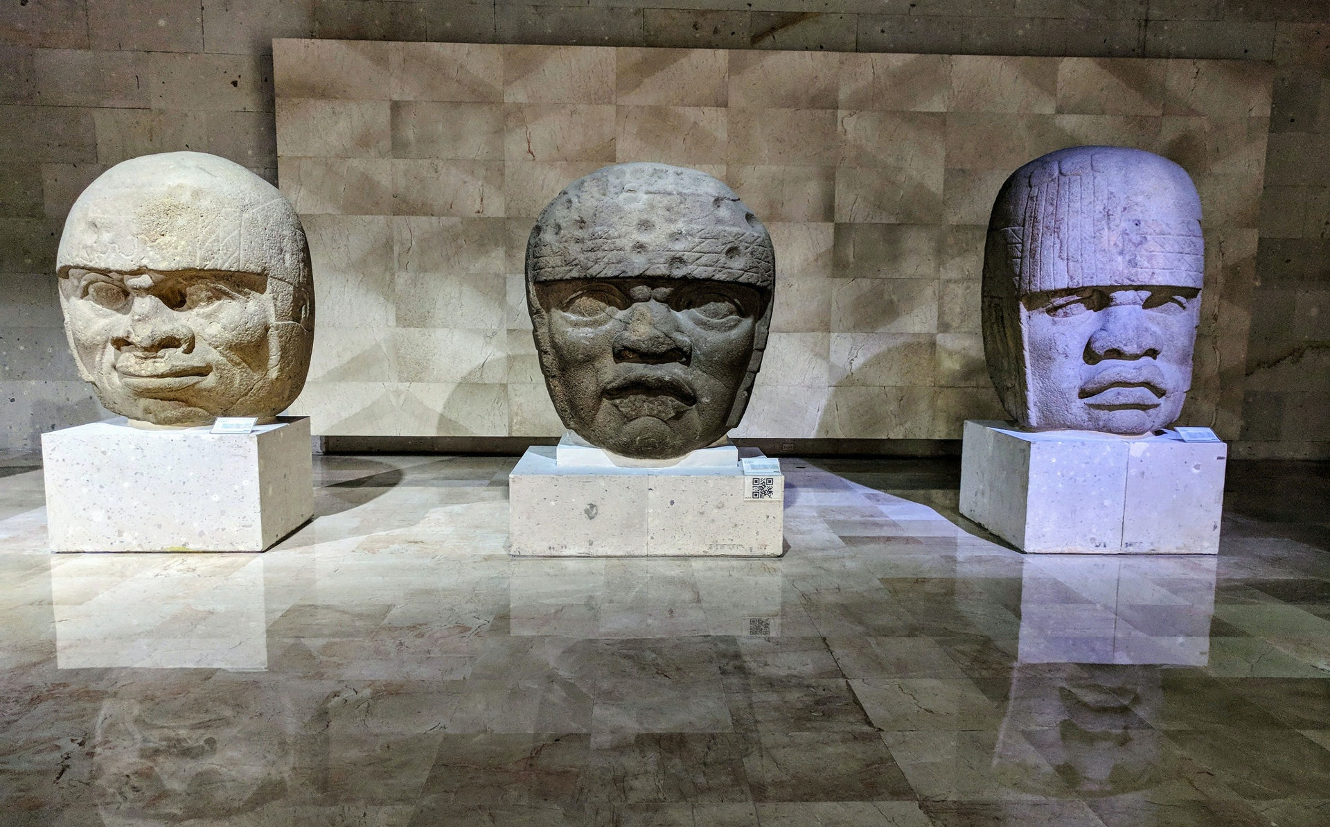 Olmec heads, Anthropology Museum, Xalapa