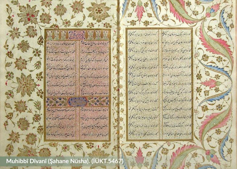 Divan-ı Muhibbi